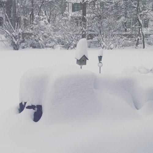 snow glencoe